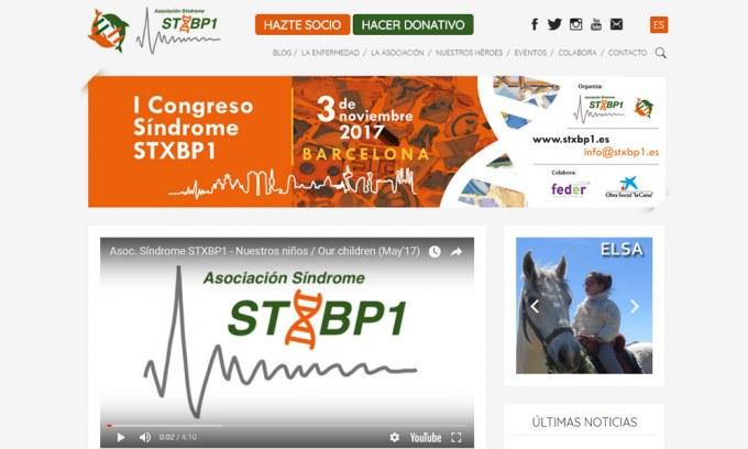 STXBP1, diseño web